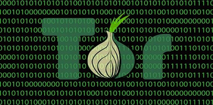 Photo of Bug Bounty Program Tor Security Hacking!